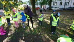 Dzieci w parku, zbierają z trawnika śmieci