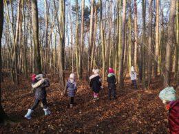 Dzieci ciepło ubrane wędrują po lesie. Jest błękitne niebo i świeci słońce