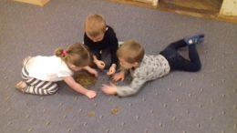 Dzieci segregują groszówki na dywanie