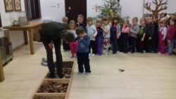 Dzieci przechodzą po ścieżce sensorycznej wykonanej z drewnianych skrzynek wypełnionych mchem i szyszkami. Przedszkolaki stoją jeden za drugim cierpliwie czekając na swoją kolej