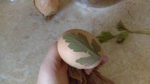 zdjęcie jajka z listkiem pietruszki na nim