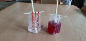 zdjęcie eksperymentu z solą