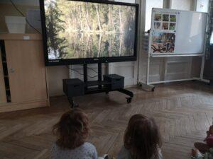 dzieci siedzą przed monitorem, oglądają prezentację o lesie
