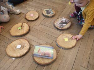 dziewczynka ogląda plaster drewna, na którym są przyczepione ilustracje zwierząt
