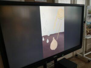 monitor z kadrem z cebulki tulipana w ziemi