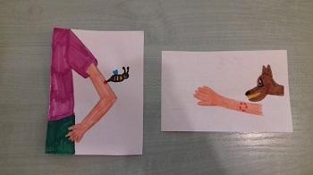 Na stoliku znajdują się dwie ilustracje. Na jednej narysowana jest postać z ręką i pszczołą, na drugiej zaś ręka oraz pies