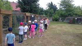 Grupa dzieci stoi przed kurnikami