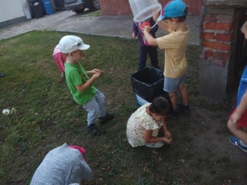 Akcja Segregacja - Krasnale