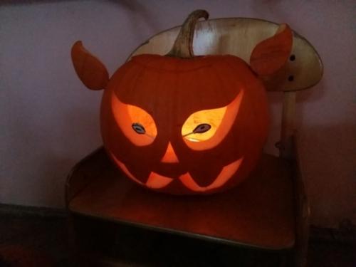 Halloween Tygrysków i Biedronek
